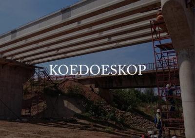 Koedoeskop01